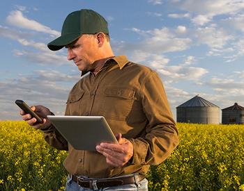 Как мобильные технологии меняют сельское хозяйство